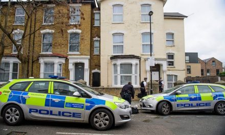 Police Arrest Man After Two UK Toddlers Attacked, One Dead