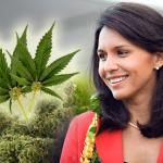 Decriminalize Marijuana: Congresswoman Tulsi Gabbard Proposes New Bill