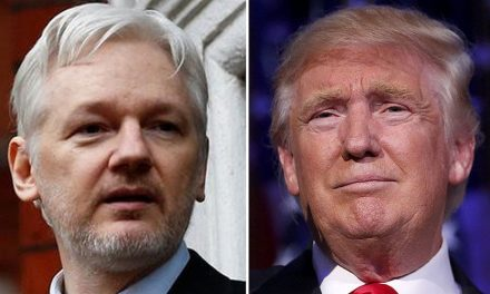Assange: Deep State Working to Remove Trump, Install Pence