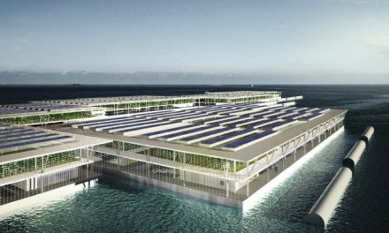 Solar-Powered Floating Farm Could Produce 20 Tons Of Vegetables Daily