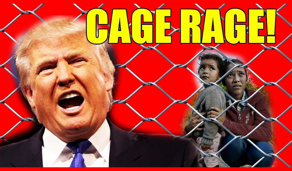 Is Trump King Of The Cage?