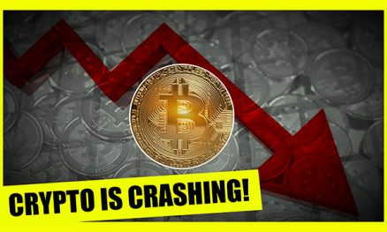 The Bitcoin Economy Crash Explained!