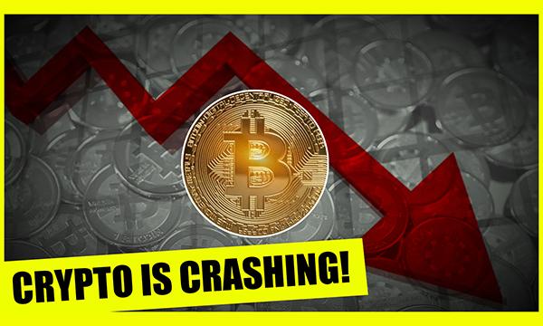 The Bitcoin Economy Crash Explained!