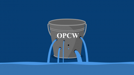 Understand the OPCW Scandal in 7 Minutes by Watching This Video