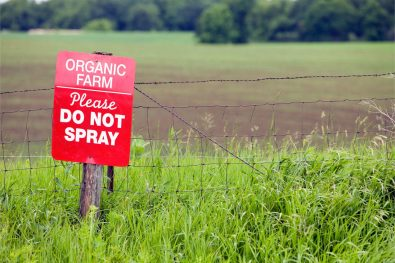 Groundbreaking Study Shows Organic Diets Drastically Lower Glyphosate Levels in the Body