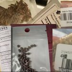 """Tens of Thousands"" Received China Mystery Seeds in the Mail, and Many People Planted Them"