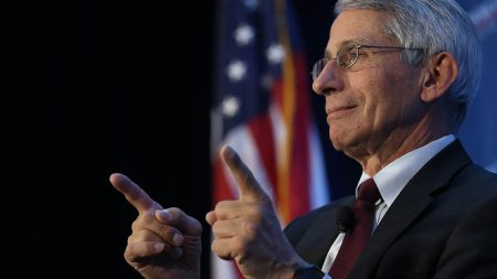 Dr. Fauci Warns US Likely to Cancel Christmas, Hints That Masks & Social Distancing Are Here to Stay