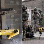 Boston Dynamics' Robot Dog Tested in War-Training Exercise