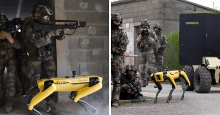 Boston Dynamics' Robot Dog Tested in War-Training Exercise