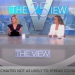 'The View' Sent Into Chaos After Two Hosts Test Positive for COVID-19 Mid-Show; Kamala Interview Upended